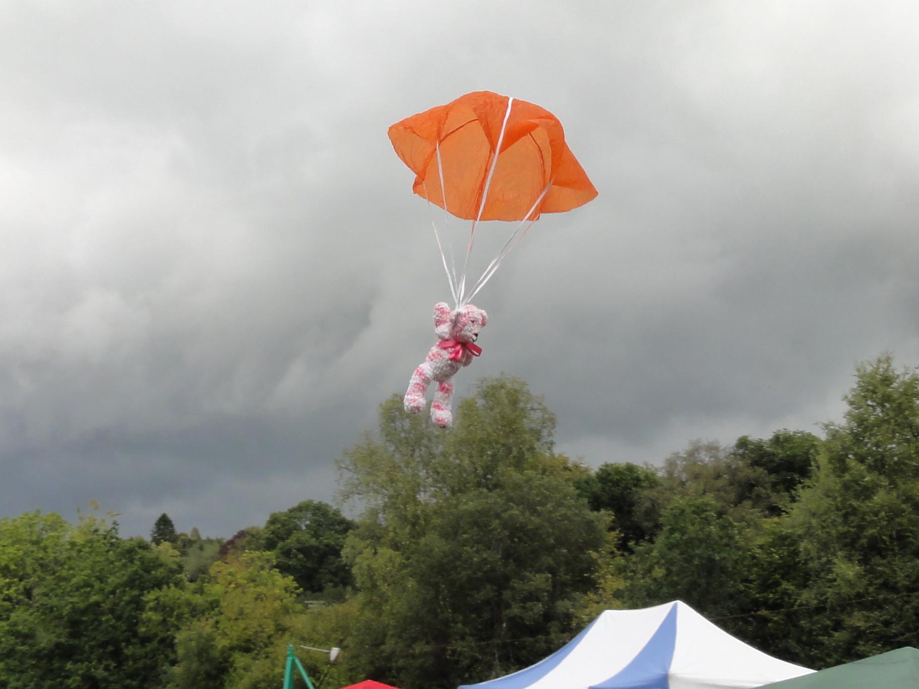 Teddy_Flying
