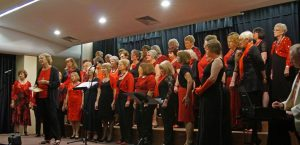 Basingstoke Ladies Choir